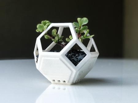 Plantygon - Modular Geometric Stacking Planter for Succulents