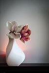 Plactron vase delta  3d model for 3d printers