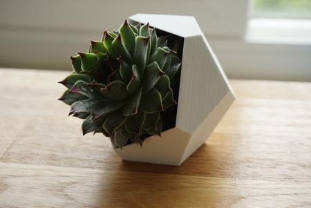 Succulent Planter (Dodecahedron)