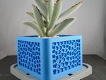 Voronoi planter  3d model for 3d printers