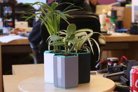 Multi-Color Self-Watering Planter